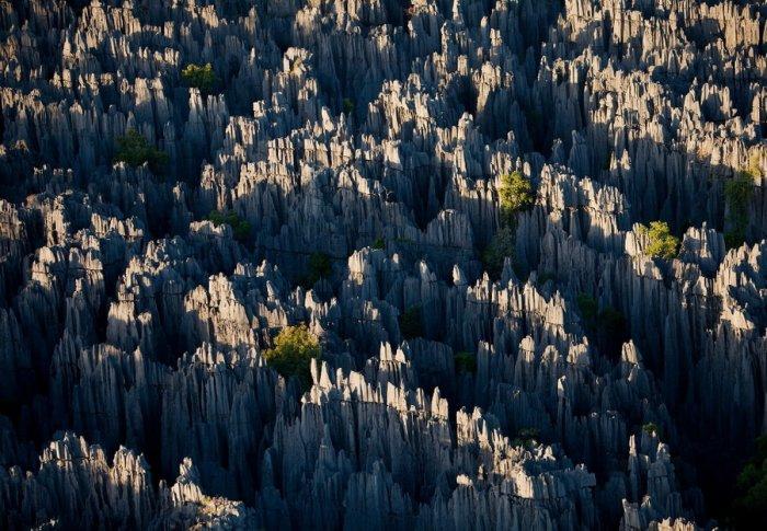 Madagascar_11