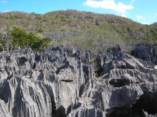 Tsingy_Ankarana_Madagascar_16-07-2004