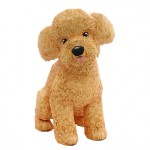 toy-poodle_thl