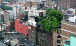 16x les na streche