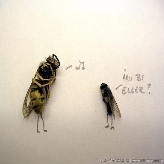 Dead_Flies_Art_9
