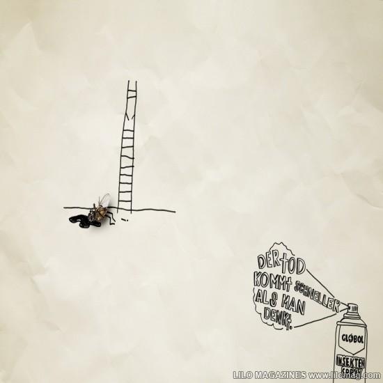 globol_Leiter_Ladder