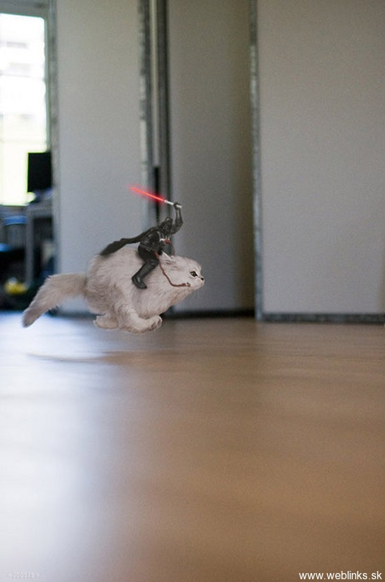 Darth-Vader-Riding-A-Cat