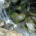 9x srdečná príroda