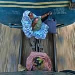 Obrázkoviny a haluze – čodopinky 7