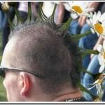 Obrázkoviny a haluze: 16x Vlasatá divočina