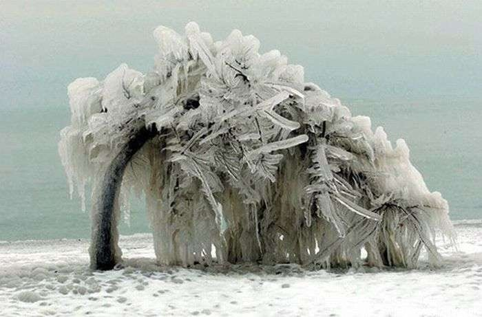 ice-and-sea-11