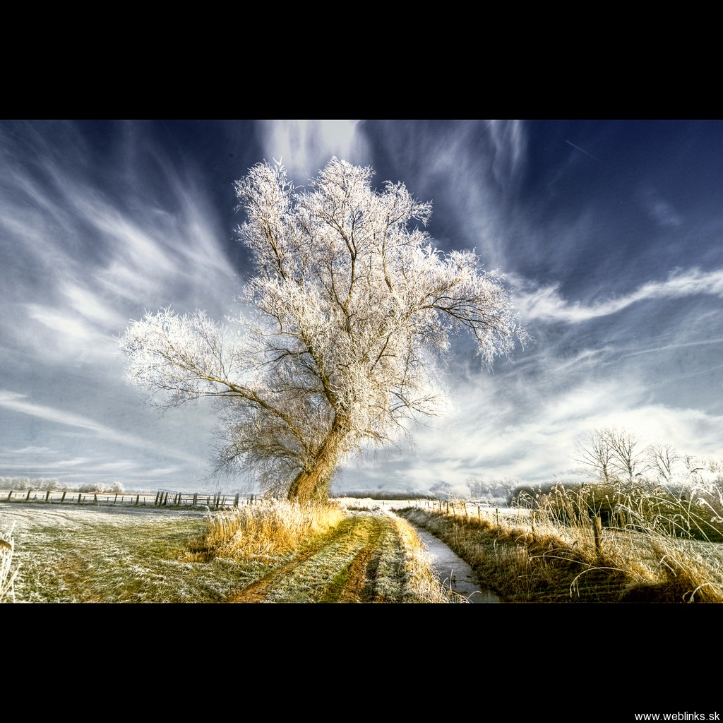 weblinks_sk hdr foto zima15
