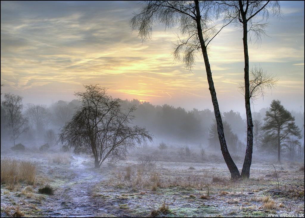 weblinks_sk hdr foto zima17