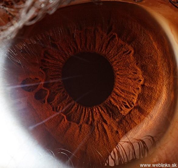 Cool_Eyes_Photos (2)
