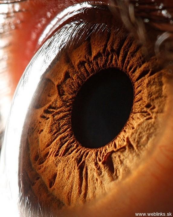 Cool_Eyes_Photos (3)