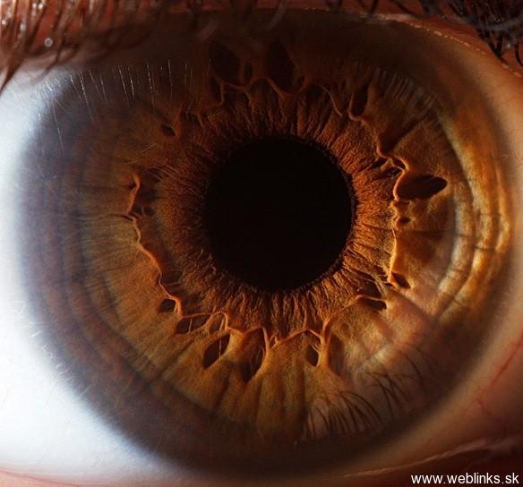 Cool_Eyes_Photos (6)