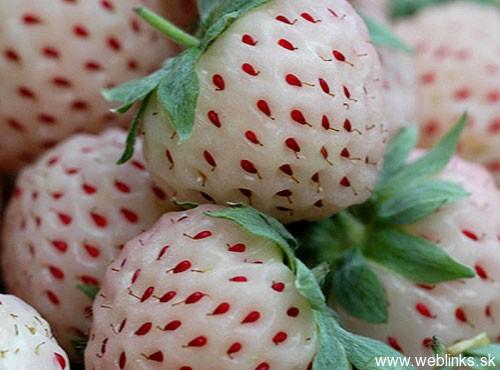 pineberries