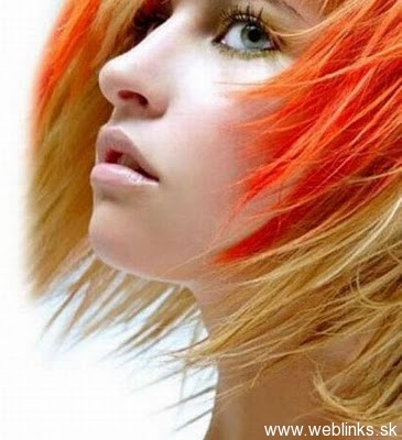 weblinks_sk haluze vlasy13