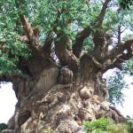 Strom prerastený zvieratami