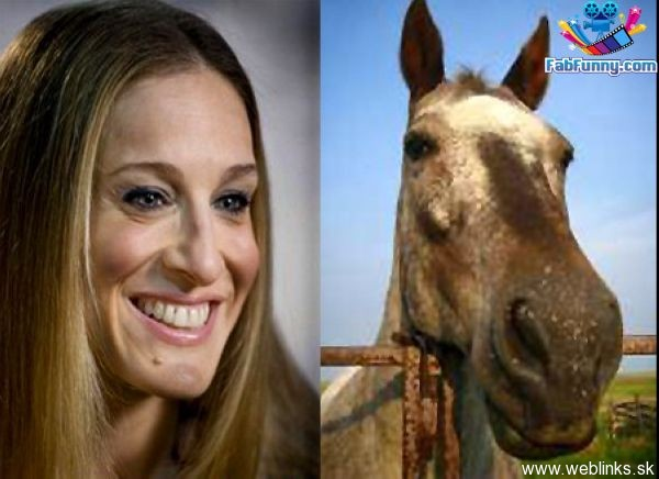 celebrity-pictures-celebrity-look-alikes-sarah-jessica-parker