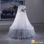 Obrázkoviny, haluze, čodopinky 24: EXTRA PORCIA