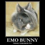 EMO zvieratká