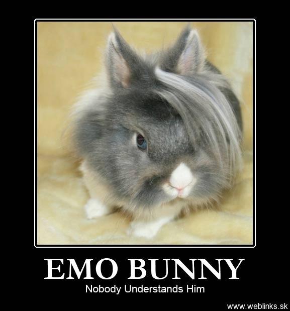 emo-bunny