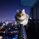 15 šialene nádherných fotiek