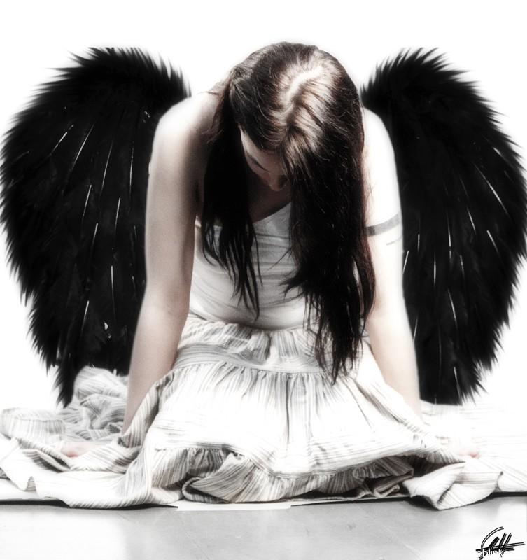 dailyfundose-com-fallen-angels-12
