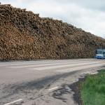 Najväčšie skladisko dreva na svete