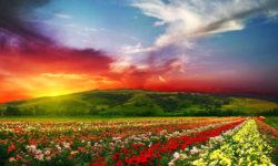 16 veľmi farebných fotiek sveta